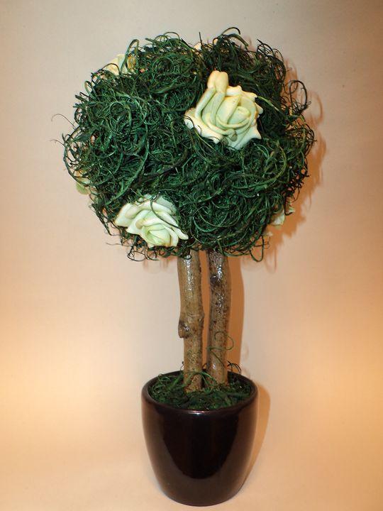 Green Rose Tree. - Angelina
