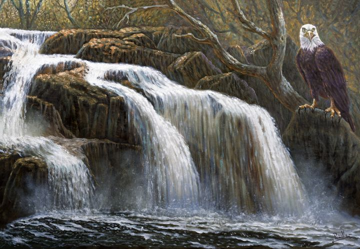 Shohola Falls - Gregory Perillo