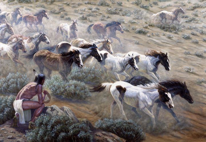 Wild Mustangs - Gregory Perillo