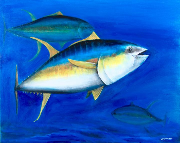 Yellowfin Tuna - Ron Zeman