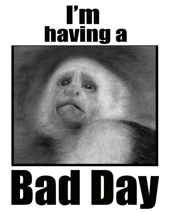 Bad day monkey - Ron Zeman