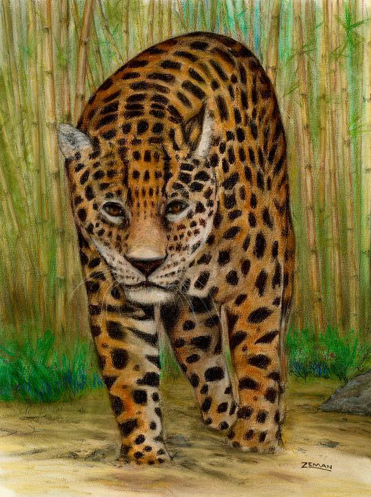 Jaguar - Ron Zeman