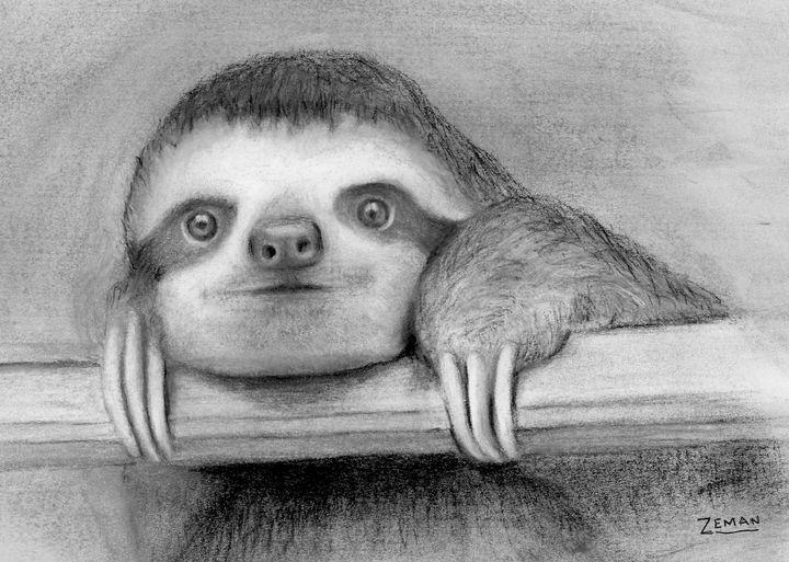 Sloth - Ron Zeman