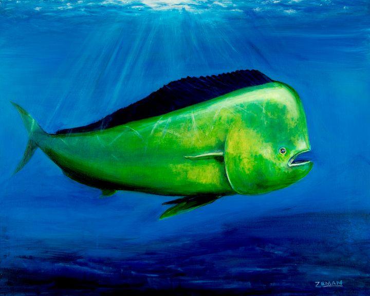 Dolphin-Mahi mahi-Dorado - Ron Zeman