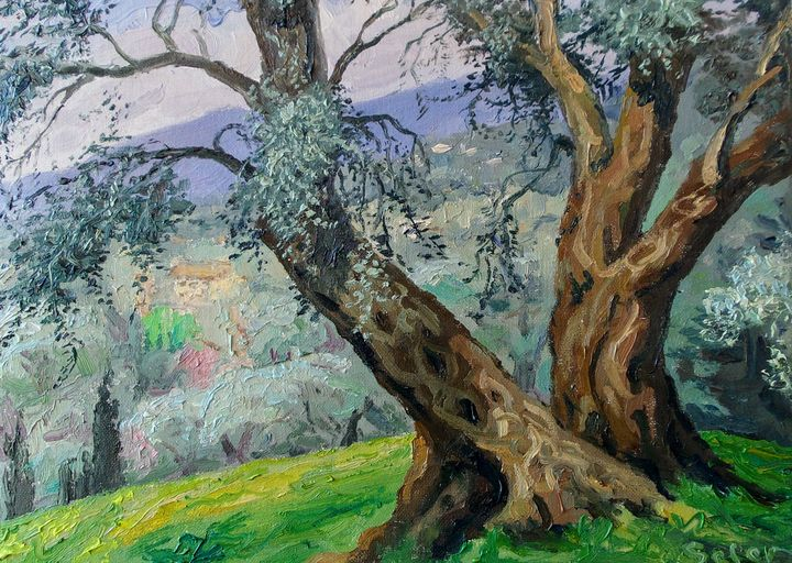 The olive trees - Corfu Paintings by Sefer