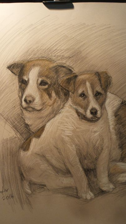 The dogs - Corfu Paintings by Sefer