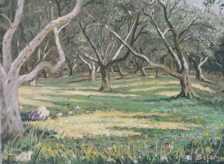 Olive trees Corfu - Corfu Paintings by Sefer