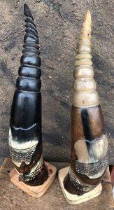 "African Cow Decorated Horn "" 4 """