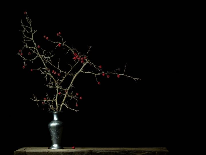 Winter red berries in a vase - Judith Flacke Still Life