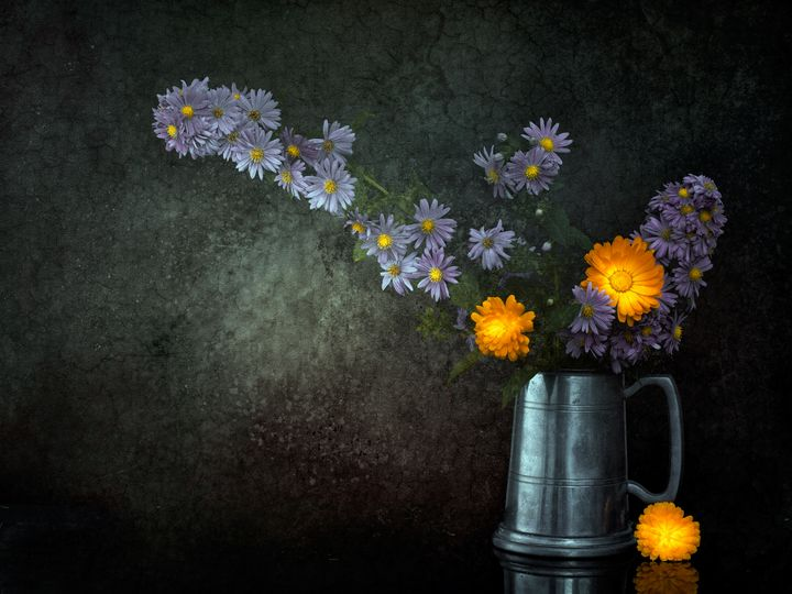 Still life with Michaelmas daisies - Judith Flacke Still Life