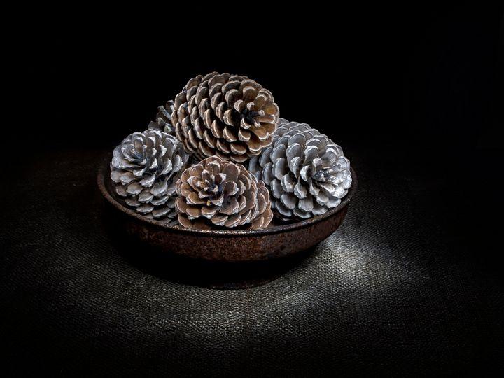Pine cones in bowl. - Judith Flacke Still Life