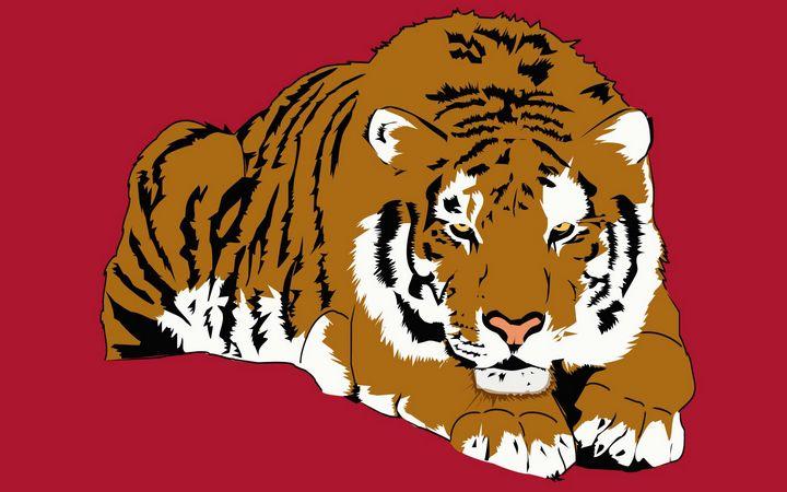 tiger - MR.C