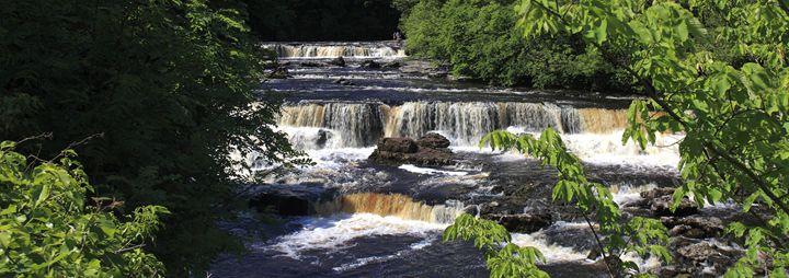 Summer, River Ure; Aysgarth Falls - Dave Porter Landscape Photography