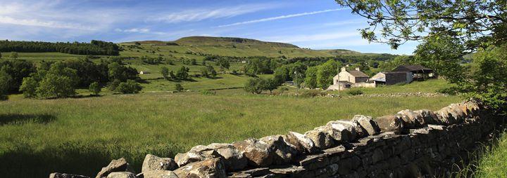 Summer, West Witton Moor, Yorkshire - Dave Porter Landscape Photography