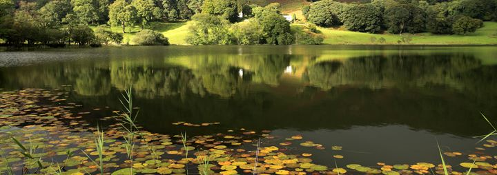 Reflections in Loughrigg Tarn - Dave Porter Landscape Photography