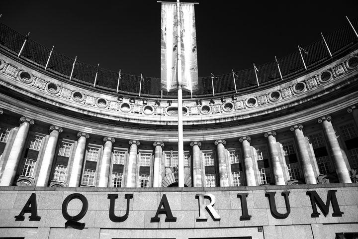 London Aquarium, South Bank London - Dave Porter Landscape Photography