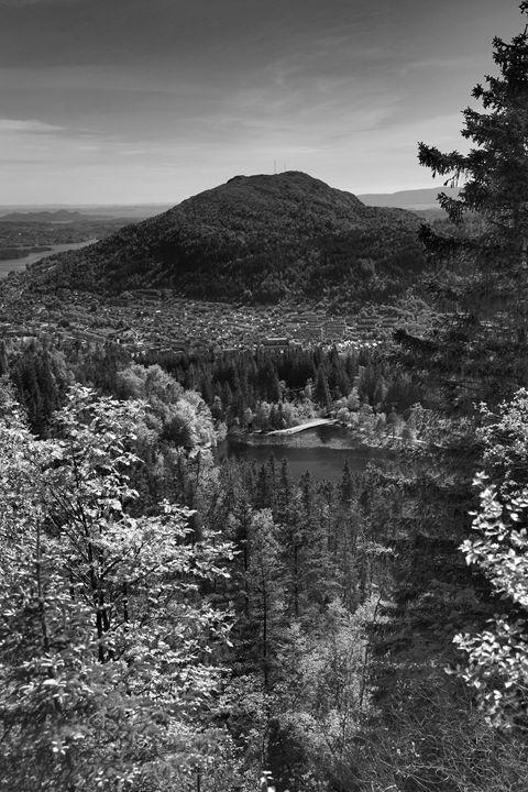 Mount Floyen, Bergen City - Dave Porter Landscape Photography