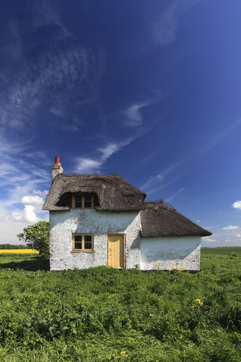 Summer field with a Fenland Cottage - Dave Porter Landscape Photography