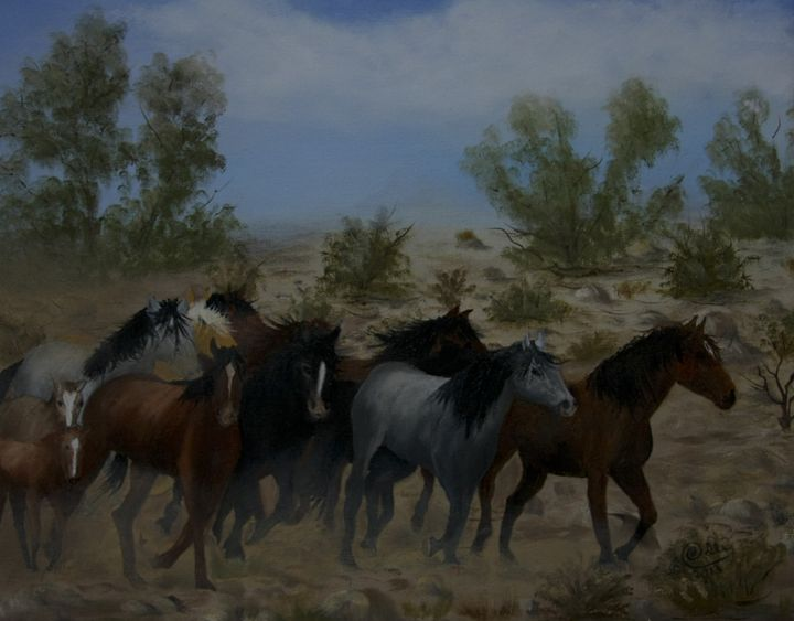 0207-0243 Open Range - Barbara Odle Fine Art