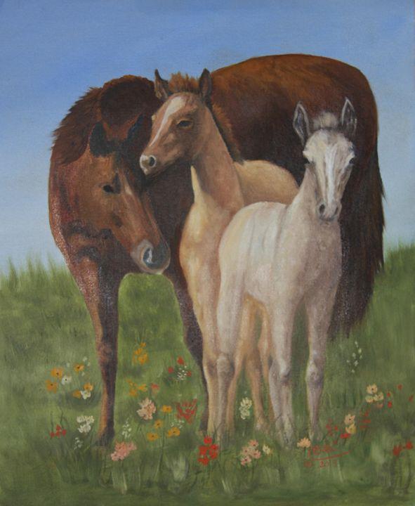 0207-0246 Foal Sitting - Barbara Odle Fine Art