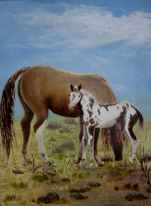 0207-0249 Wild Foal - Barbara Odle Fine Art