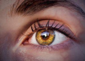 Eye to the Sun