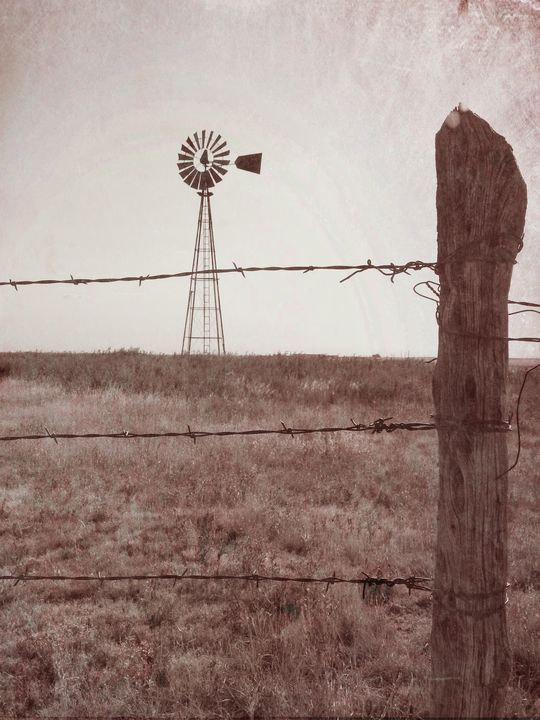 How the West was Watered - Diana Penn Artography