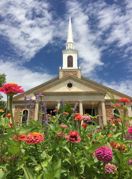 The Church in the Wildflowers - Diana Penn Artography