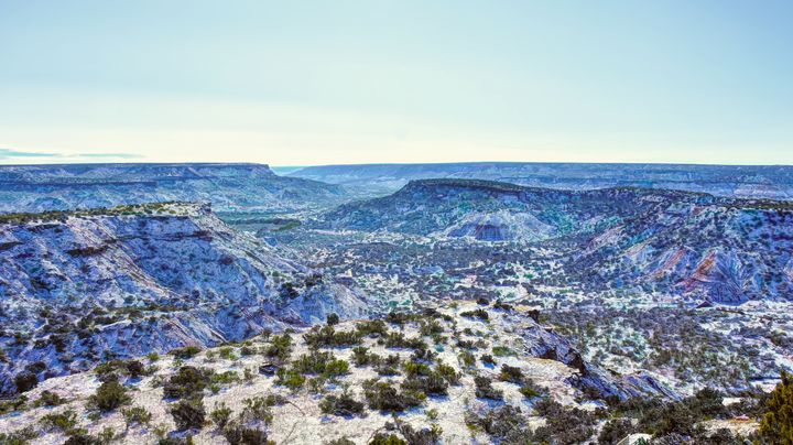 Winter in the Canyon - Diana Penn Artography
