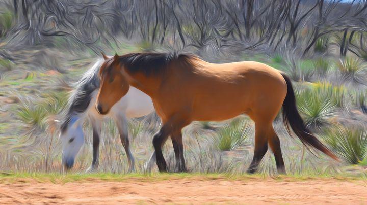 Dream Horses - Diana Penn Artography