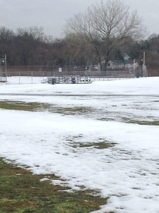 Frosty Field - Natural Wonders