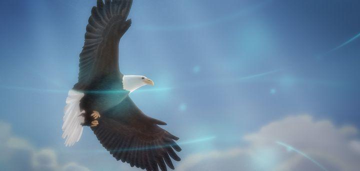 Art -- Bird of Freedom - Matthias Zegveld
