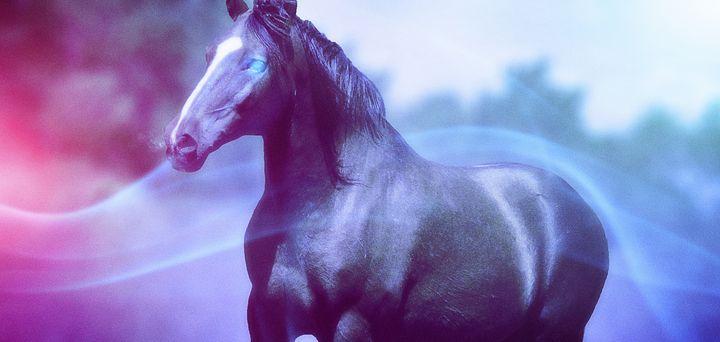Mighty Horse - Artworks by Matthias Zegveld