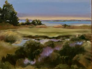 The marsh at Harkers Island - Donna Robertson