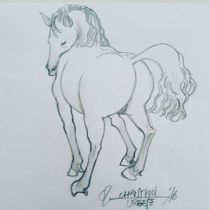 Horse - ChristianUrgese