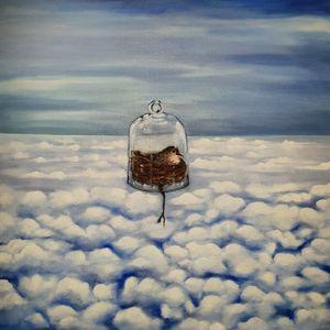 Sky and bird