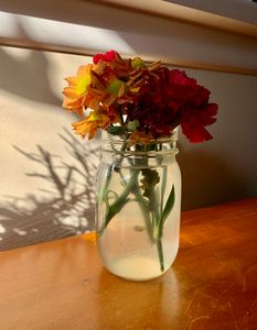 Flowers in the light