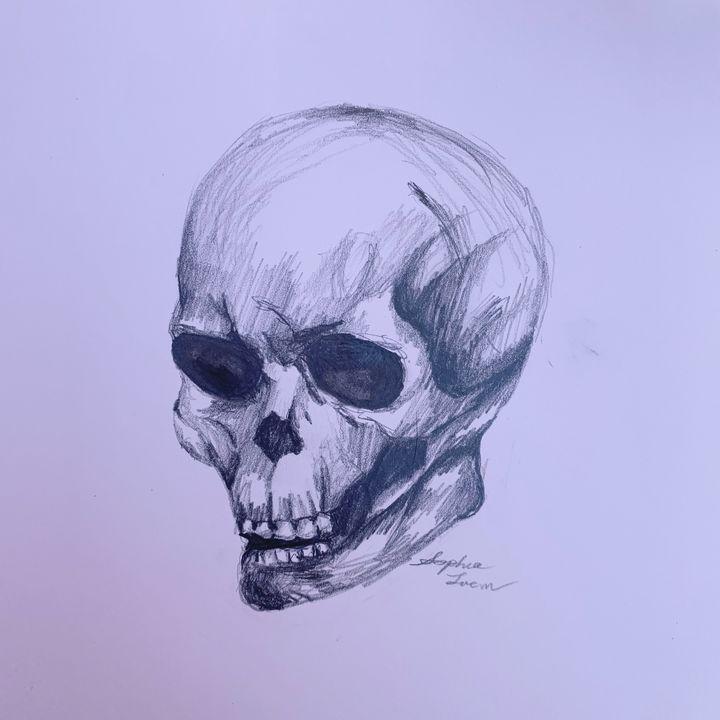 Sketch of Skull - Sophia Luem