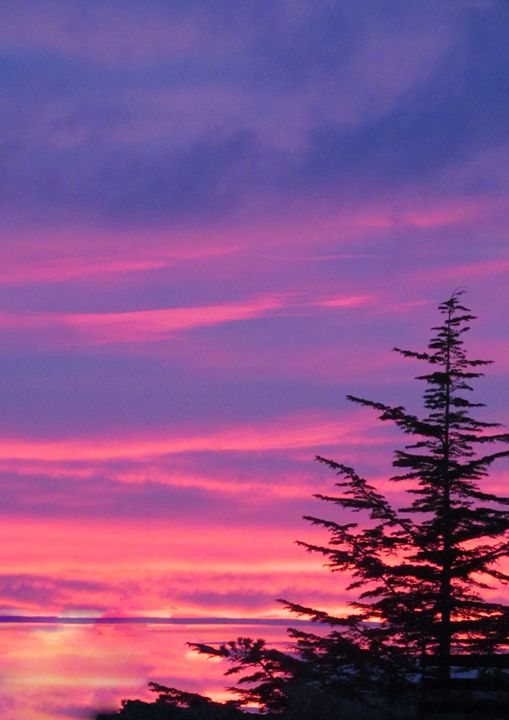 sunset - Dijana Galjanic