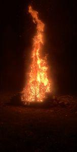 Bonfire 2.0