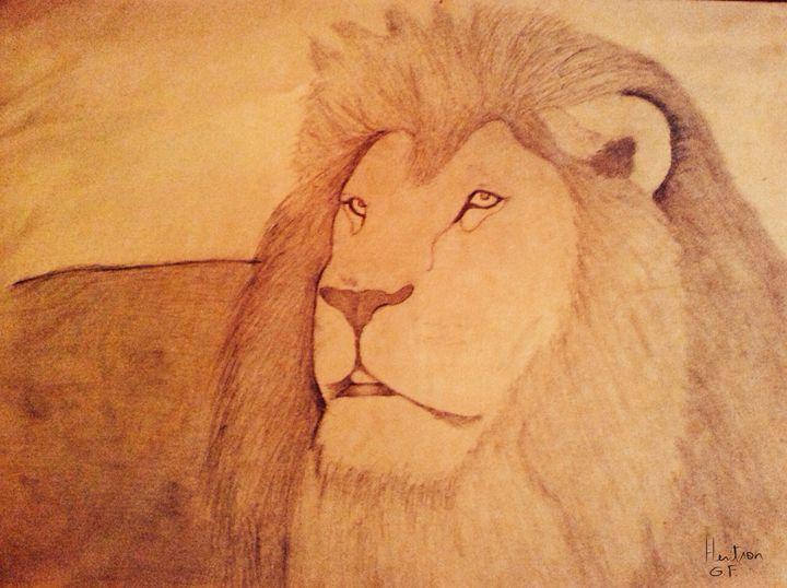 King lion - HGFA