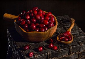 Cranberries - Victoria's Still Life