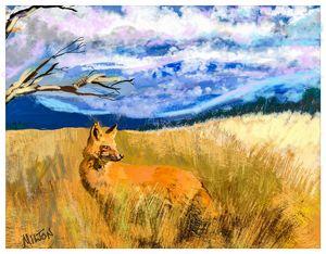 Western Carolina Red Fox - Michael Anthony Milton Gallery