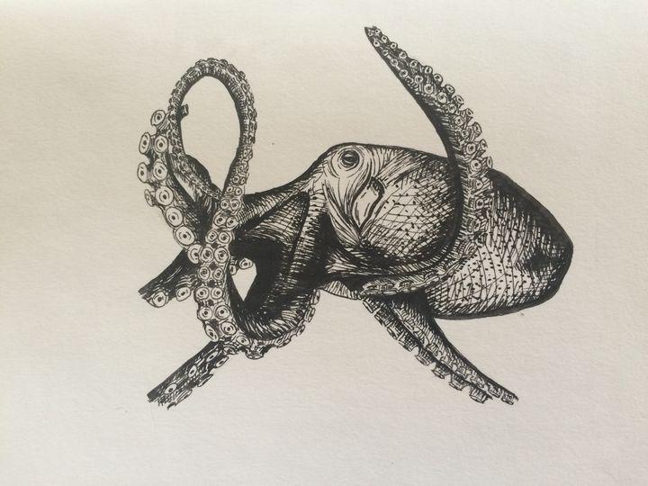 Octopus Sketch - MudSoap