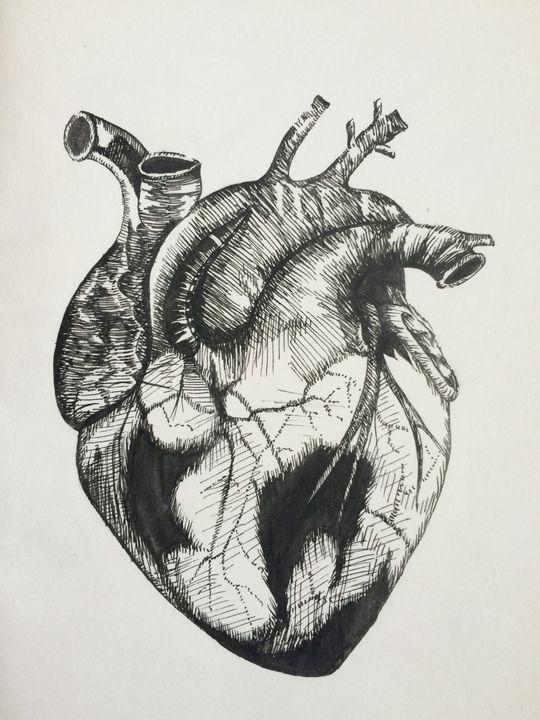 The Human Heart - MudSoap