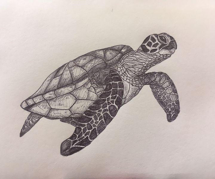 Turtle - MudSoap