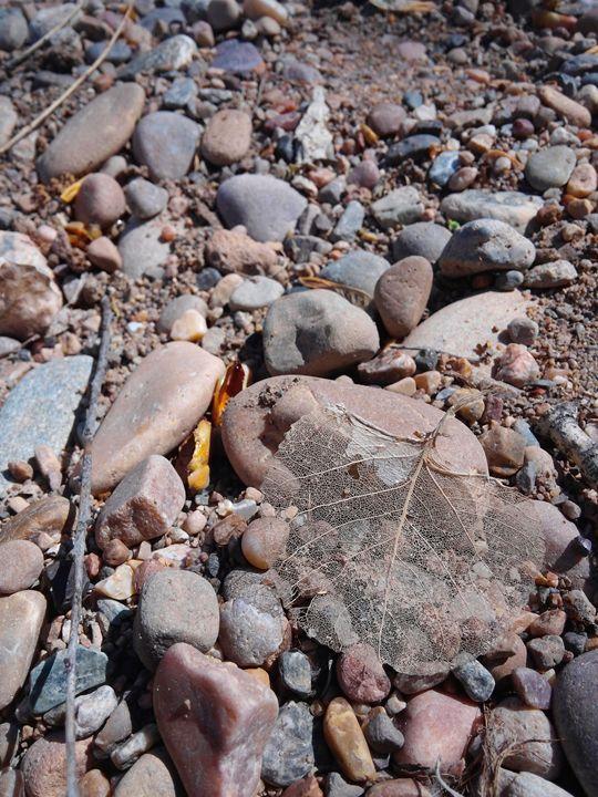 sticks and stones - lovelygraham