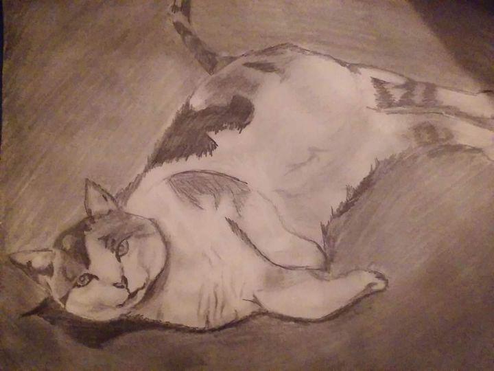 Lazy Caturday - Creatively Creed