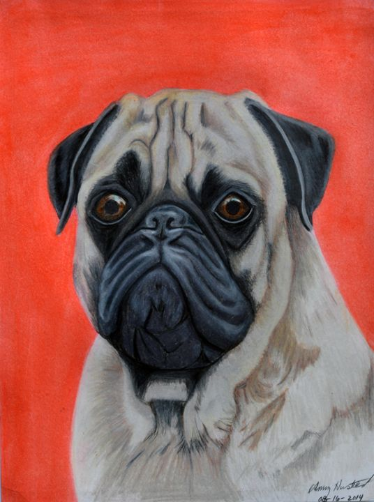 Pug Portrait - Amy L. Husted Art