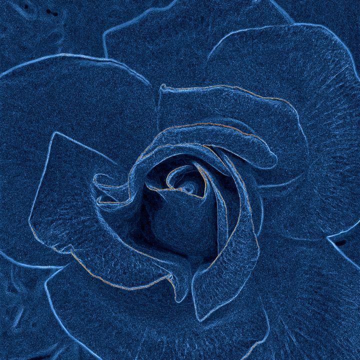 velvety blue rose - feiermar